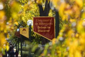 University of Minnesota Driven to Discover flag