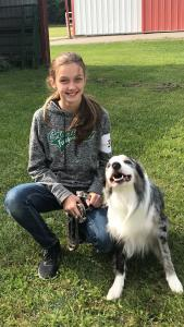 2019 Itasca County 4-H Dog Training | in itasca County | Extension